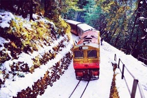 Shimla Train Tour